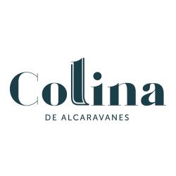 Logo Colina de Alcaravanes